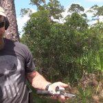gorilla-ammo-hog-hunt-part-6
